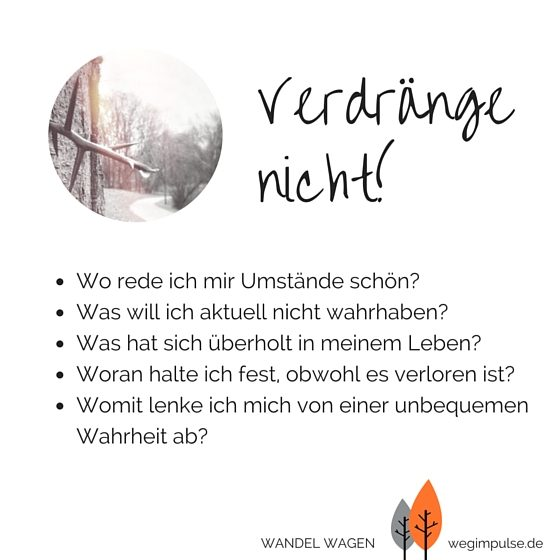 Wandel-wagen_2-1