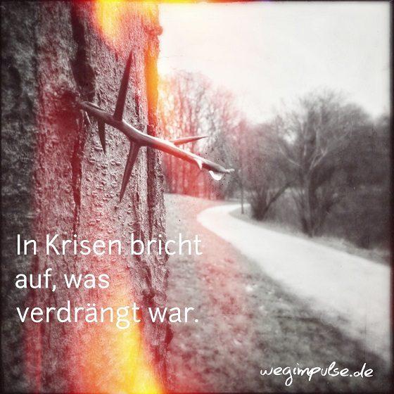 Wandel-wagen_2
