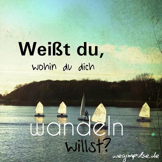 Wandel-wagen_4
