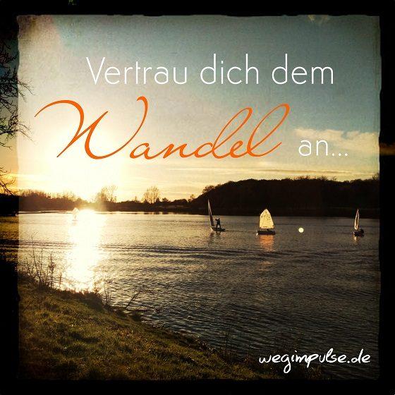 Wandel-wagen_5