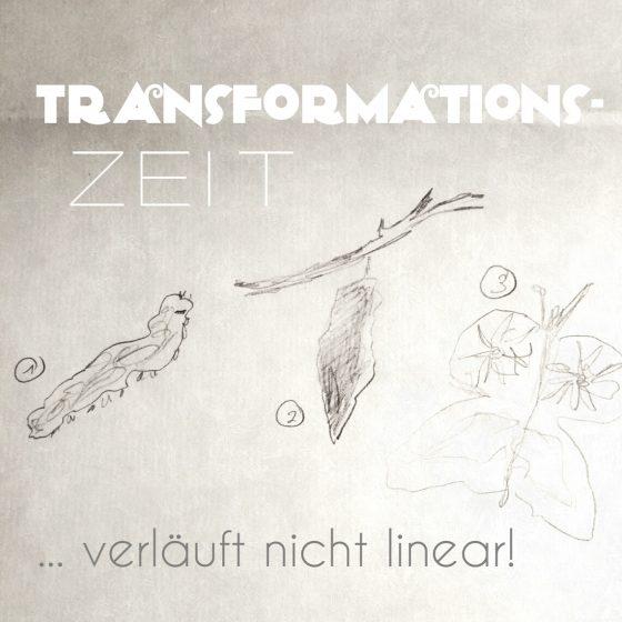 Transformationszeit verläuft nicht linear. Skizze von einer Raupe, verpuppt im Kokon und Schmetterling.